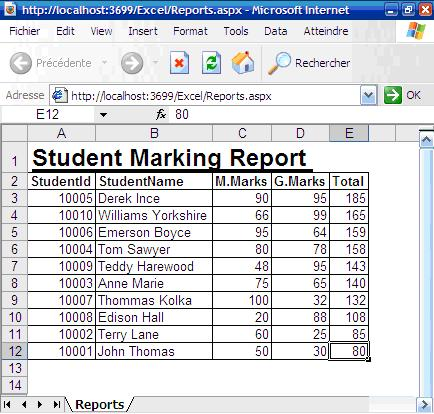 generating excel report in asp net 2 0
